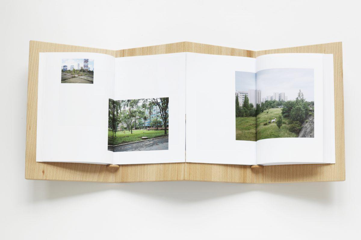 Twice, avec Grégory Lacoua  / Galerie Laurent Mueller, 2015